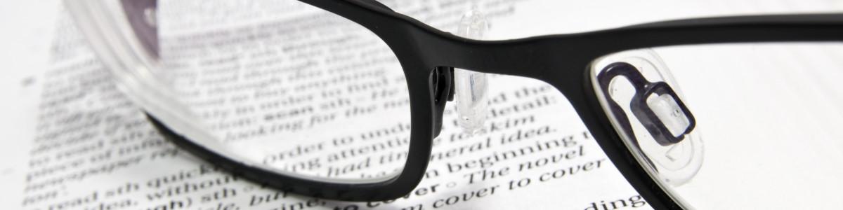 Burse de studii in Croatia si Republica Elena