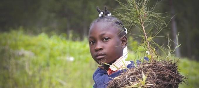 Raport anual privind politicile de dezvoltare și asistență externă a Uniunii Europene și punerea în aplicare a acestora în 2012