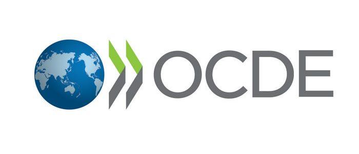 Programul tineri profesioniști al OECD 2019