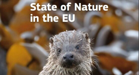 Natura 2000 – Starea naturii în UE